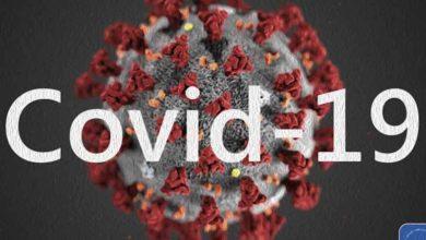 Photo of Директор лаборатории в Ухане отвергает теорию заговора COVID-19