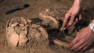 Photo of Китай обнародовал топ-10 археологических открытий
