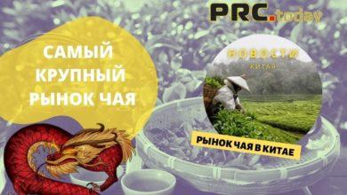 Рынок чая в Китае