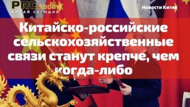 Photo of Китайско-российские сельскохозяйственные связи станут крепче, чем когда-либо