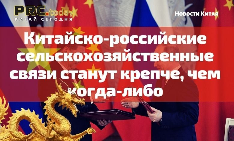 Китайско-российские сельскохозяйственные связи станут крепче, чем когда-либо