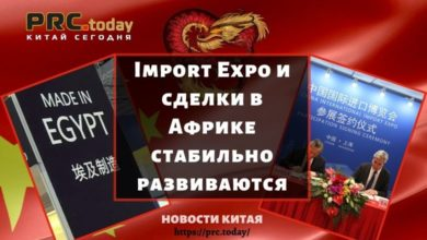 Import Expo