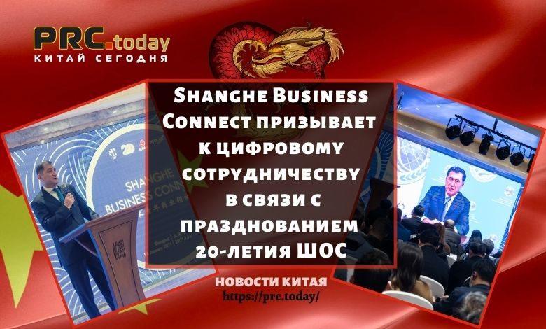Shanghe Business Connect призывает к цифровому сотрудничеству в связи с празднованием 20-летия ШОС