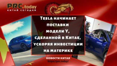 Tesla начинает поставки модели Y, сделанной в Китае, ускоряя инвестиции на материке