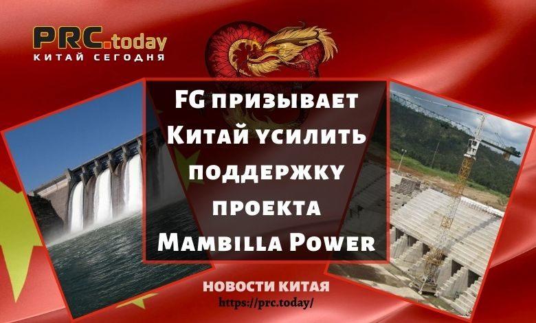 FG призывает Китай усилить поддержку проекта Mambilla Power