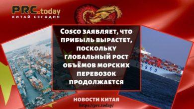 Cosco заявляет, что прибыль вырастет, поскольку глобальный рост объёмов морских перевозок продолжается
