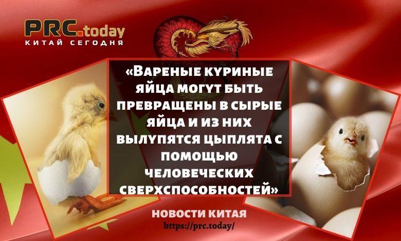 «Вареные куриные яйца могут быть превращены в сырые яйца и из них вылупятся цыплята с помощью человеческих сверхспособностей»