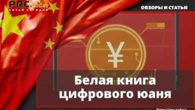 Белая книга цифрового юаня